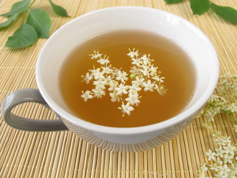 Le thé blanc, le thé le plus riche en bienfaits anti-cancer