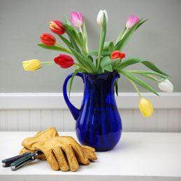 3. Faire durer un bouquet de fleurs coupées
