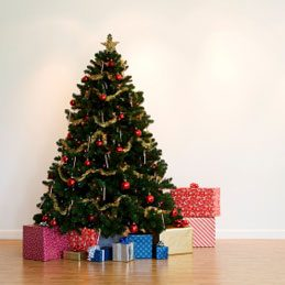 3. Support pour sapin de Noël