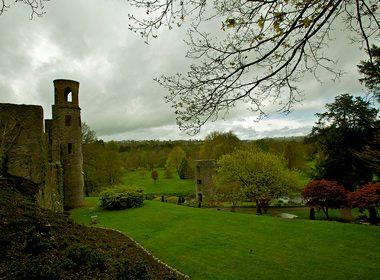 Les châteaux d'Irlande