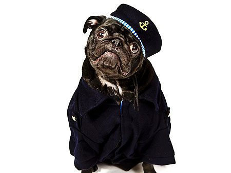 Rocky le matelot