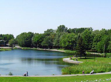 Le parc du Mont-Royal