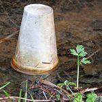 9 astuces simples et faciles pour votre jardin