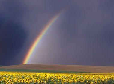 Une chaudière d'or au pied d'un arc-en-ciel