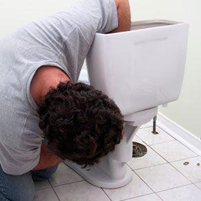 Vérifiez le siphon des toilettes