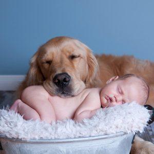 Les bébés comprennent les émotions des autres