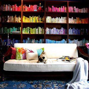 1. Une bibliothèque classée par couleur
