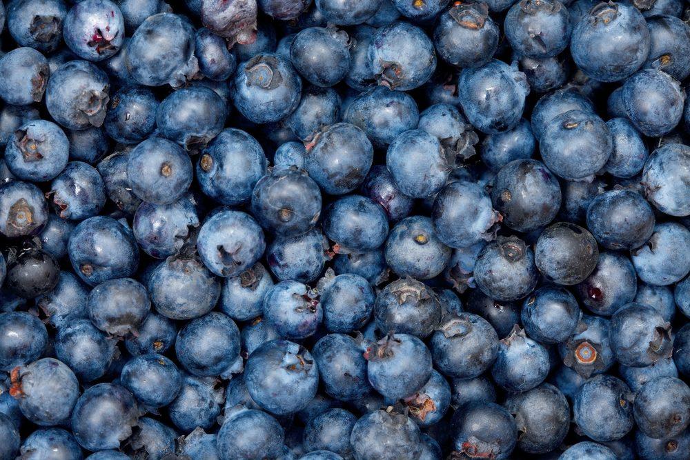 Pour faire baisser son taux de cholestérol, mangez des bleuets.