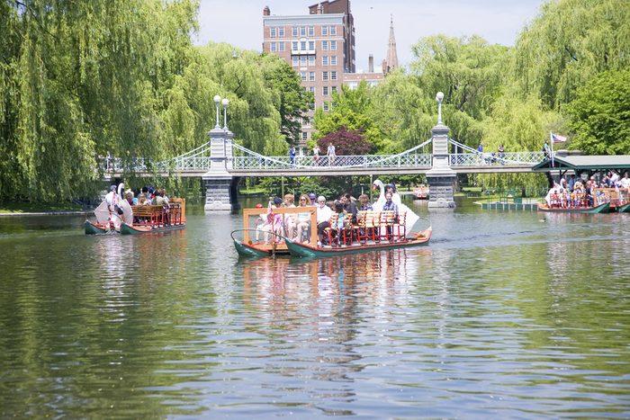 Une activité à faire avec vos enfants à Boston: les bateaux-cygnes
