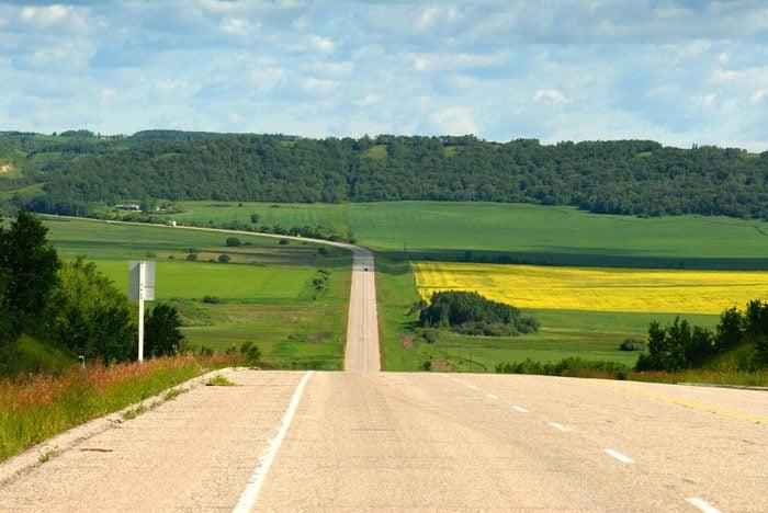 Un road trip de Brandon au Parc Provincial de Spruce Woods, au Manitoba