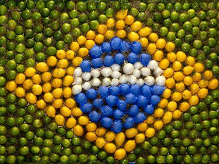 10 meilleurs conseils du guide alimentaire brésilien