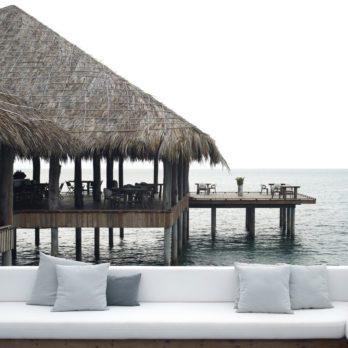 Écotourisme : 4 destinations de voyage écolos