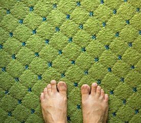 2. Nettoyez les tapis et les meubles rembourrés