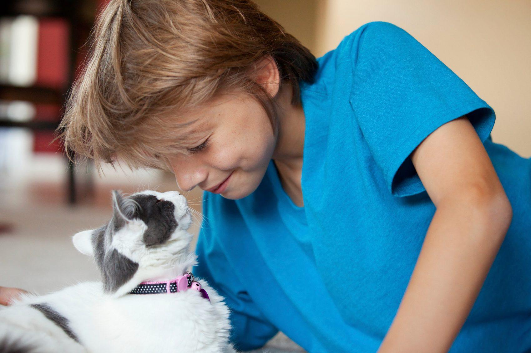 6. Les chats communiquent par l'odorat