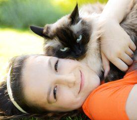 5. Les chats possèdent un certain je-ne-sais-quoi.