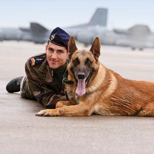 Un chien contre le cancer
