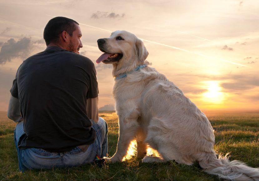 Les amoureux des chiens sont plus extravertis