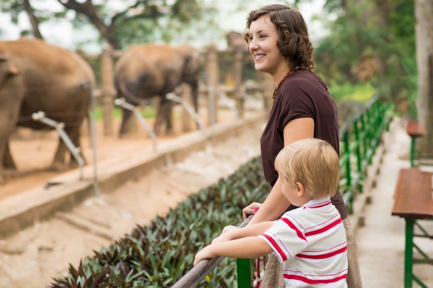 Les amoureux des chiens aiment davantage les zoos