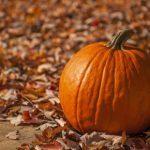 Ce mois-ci dans le magazine Sélection du Reader's Digest – Octobre 2014