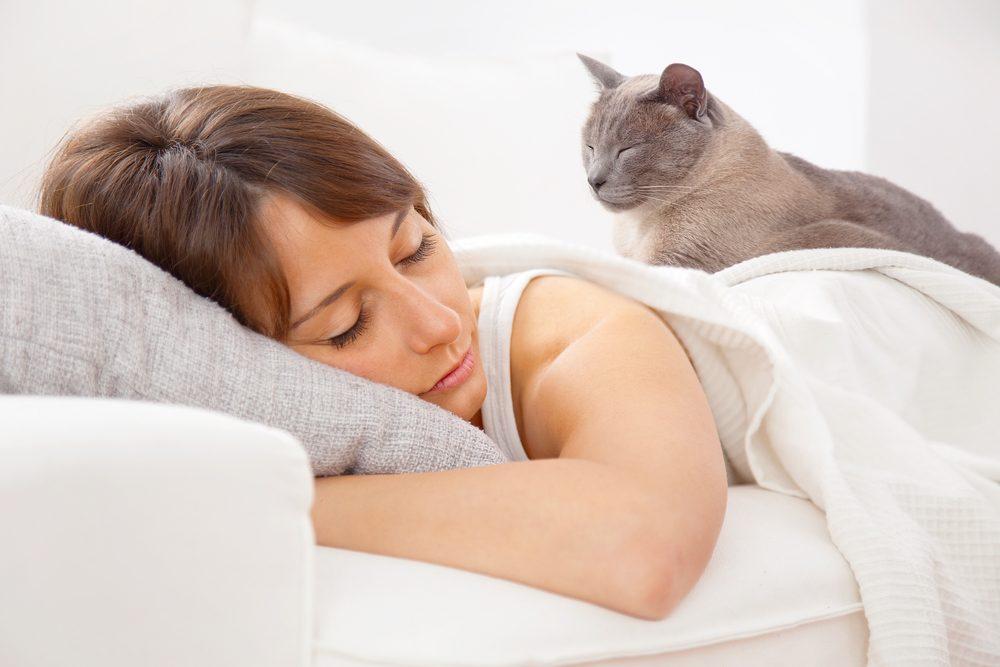 1. Pourquoi votre chat agit-il comme un réveille-matin? Quel comportement bizarre!