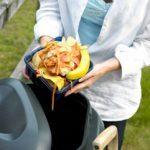 L'abc du compost de cuisine