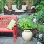 5 critères pour évaluer une pelouse abîmée
