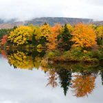 Cap-Breton: Les 8 meilleurs sites touristiques