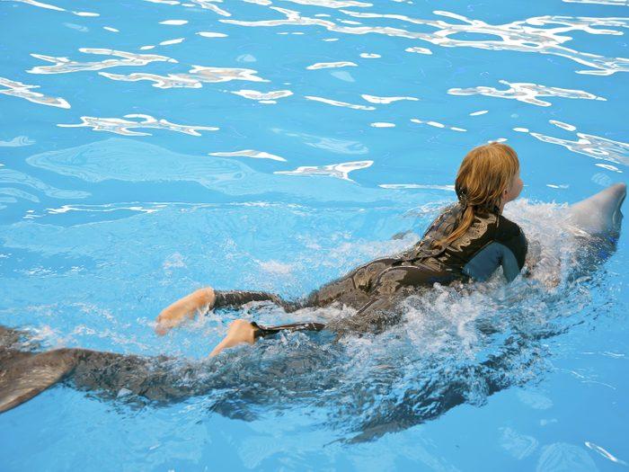 Les dauphins de Marathon Key