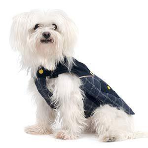 9. Un manteau peut être utile