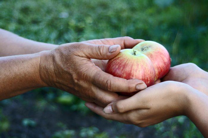 Aidez à réduire les douleurs de la faim en donnant à une cause de charité