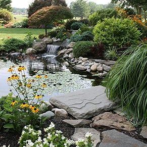 Créez le jardin de vos rêves