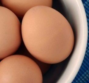 5 bonnes raisons de consommer des oeufs