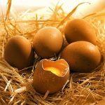 5 trucs à faire avec les œufs