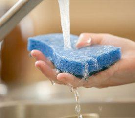 12. Éliminez les bactéries des éponges