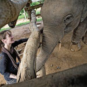 Comment un éléphanteau a changé la vie d'une femme