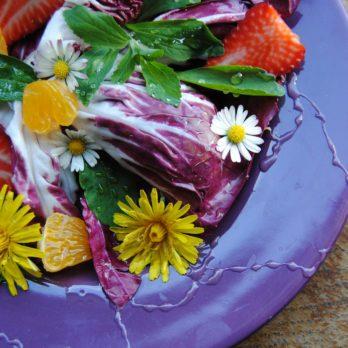 Les meilleures fleurs comestibles pour cuisiner