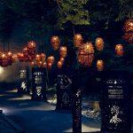 Foresta Lumina, une forêt phénoménale à Coaticook