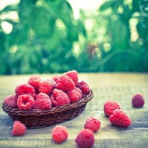 2. Petits fruits