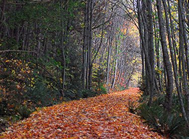Sentier régional Galloping Goose, Colombie-Britannique