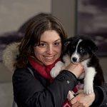 Le geste qui compte: la madone des chiens perdus