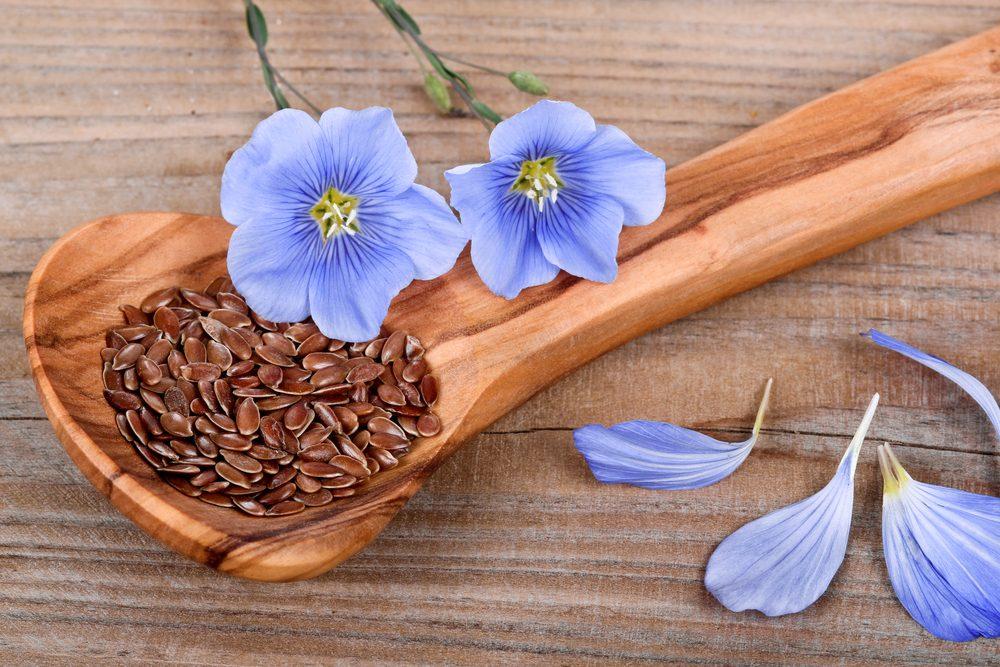 Source de protéines végétales : les graines de lin.