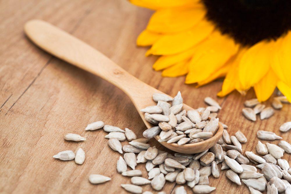 Source de protéines végétales : les graines de tournesol.