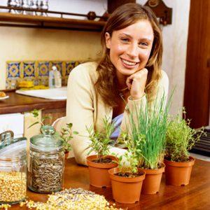 8. Vérifier la viabilité de vieilles semences