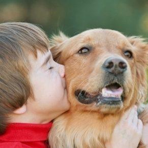Le guide ultime du bon chien
