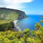 Hawaï : Un «Parc Jurassic » végétal