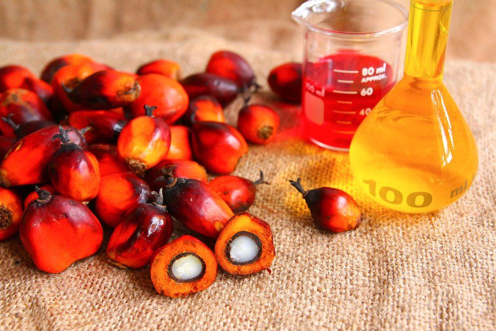Pour faire baisser son taux de cholestérol, évitez l'huile de palme.