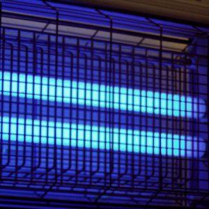 2. Lampes anti-moustiques