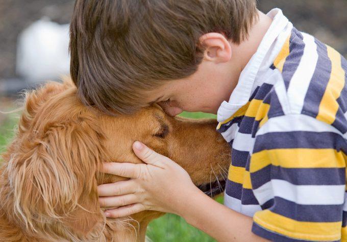 Les services funéraires pour animaux en plein essor