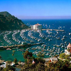 2. L'île de Santa Catalina