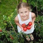 10 secrets pour mieux faire pousser vos légumes